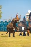 Piernas traseras del elefante que levantan al amaestrador Foto de archivo libre de regalías