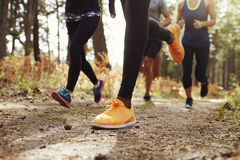 Piernas y zapatos de cuatro adultos jovenes que corren en el bosque, cosecha Fotografía de archivo libre de regalías