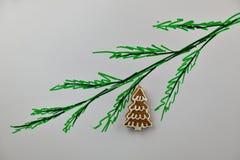 Piernikowy drzewo na zielonej gałąź Obraz Stock