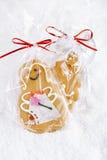 Piernikowy dziewczyny ciastka prezent w jasnej torbie fotografia royalty free