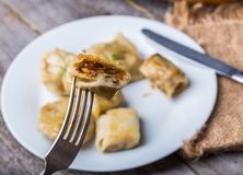 Pierogi (dumplings with sauerkraut and mushrooms) Stock Images
