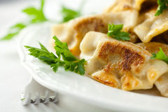 Pierogi. Polish christmas dih Royalty Free Stock Photography