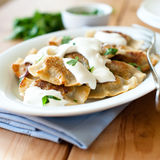 Pierogi with sour cream Stock Photos