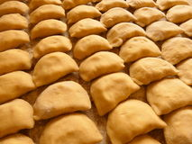 Pierogi Varenyky Raw Stock Images
