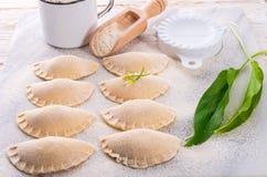 Pierogi with wild garlic filling Stock Image