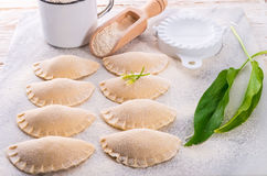Pierogi With Wild Garlic Filling Stock Image