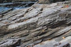 pierre Image stock
