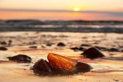 Pierre ambre sur la plage Gemme précieuse, trésor Mer baltique Photo libre de droits