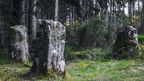 pierre antique de cercle Photos libres de droits