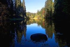 Pierre au milieu des arbres reflétant le niveau d'eau du lac Vrbicke Photos libres de droits
