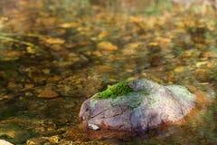 Pierre avec de la mousse sur la rivière image stock