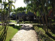 Pierre bleue verte de ciel de plage de flore de végétation d'hôtel de voyage d'hôtel de la paume trois de la République Dominicai photos libres de droits