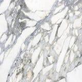 Pierre décorative de texture de plancher de marbre de fond Images stock