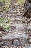 Pierre d'escalier Photographie stock libre de droits