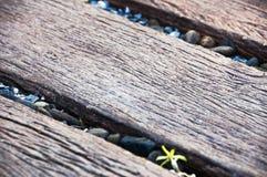 Pierre de caillou au milieu de la manière en bois de chemin Photos libres de droits