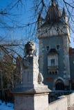 pierre de lion Image stock