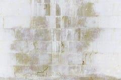 Pierre de mur repérée images libres de droits