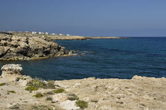 Pierre de volcan et quelques fleurs à la plage et à l'eau bleue d'espace libre Image stock