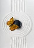 Pierre de zen avec le papillon photo libre de droits