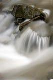 Pierre et fleuve Photographie stock