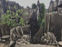 Pierre Forest Limestone Formation de Shilin photos stock