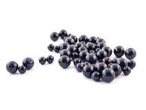 Pierre gemme bleue d'Aventurine de gemme minérale d'isolement sur le fond blanc Image libre de droits
