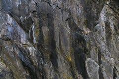 Pierre naturelle rugueuse sans couture avec la texture verte et blanche de mousse Photo libre de droits