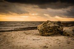 Pierre sur la plage Photos stock