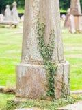 Pierre tombale très vieille avec les feuilles vertes images libres de droits