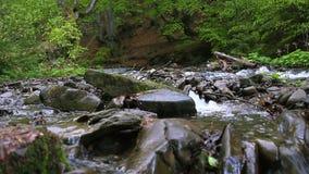 Pierres énormes au milieu de la rivière rapide de montagne Fond sauvage de rivière de forêt banque de vidéos