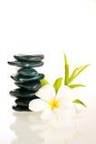 Pierres équilibrées de zen avec la fleur et le bambou Photographie stock libre de droits