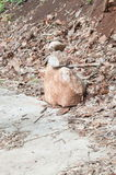 pierres Photo stock