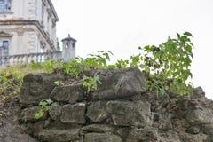 Pierres antiques de château ruiné de Pidhirtsi en Ukraine occidentale Photo stock