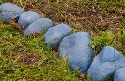 Pierres bleues Images stock