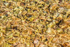 Pierres dans l'eau Plage pierreuse Réflexions colorées sur l'eau Photos stock