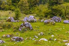 Pierres de Boulder dans Koenigssee, Konigsee, parc national de Berchtesgaden, Bavière, Allemagne photo stock