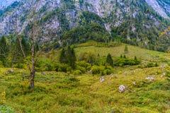 Pierres de Boulder dans Koenigssee, Konigsee, parc national de Berchtesgaden, Bavi?re, Allemagne photos stock
