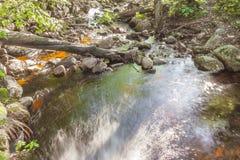 Pierres de cascade de rivière de forêt Photos stock