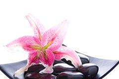 Pierres de fleur et de zen photos libres de droits