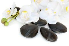 Pierres de massage avec l'orchidée image libre de droits