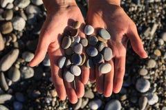 Pierres de mer dans des mains Photographie stock