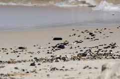 Pierres de plage Image stock