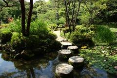 Pierres de progression dans le jardin japonais Photographie stock libre de droits