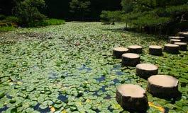Pierres de progression dans le jardin japonais Images stock