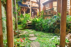 Pierres de progression par le jardin et le stru tropicaux vert-foncé luxuriants Image stock
