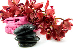 Pierres de station thermale avec l'orchidée rouge Images libres de droits