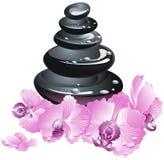 Pierres de station thermale avec la fleur d'orchidée Photographie stock libre de droits
