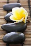 Pierres de station thermale avec le frangipani Image stock