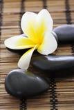 Pierres de station thermale avec le frangipani Photo stock