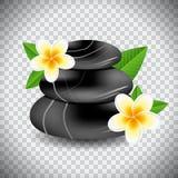 pierres de station thermale et fleur de plumeria illustration stock